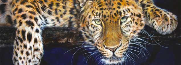 angela-gaughan-leopard