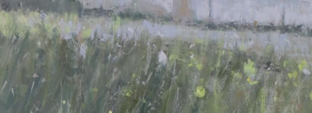tony-merrick-flowers-field